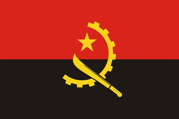 Angola transmits national plan for implementing the Stockholm Convention