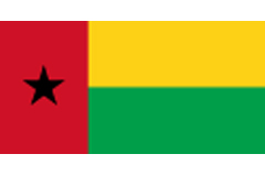 Guinea-Bissau transmits updated national plan for implementing the Stockholm Convention