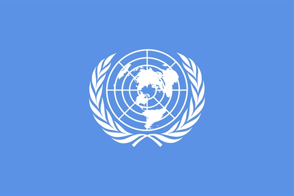 BRS Secretariat joins steering committee of UN global body on environment